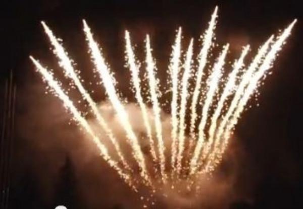 Feuerwerk Timerain willow fan von Pyrotrade online kaufen im Feuerwerkshop Funkelfun