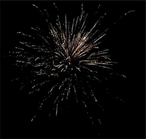 Feuerwerk Brocade Wonderland von Pyrotrade online kaufen im Feuerwerkshop Funkelfun