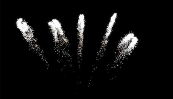 Feuerwerk Silver Farfalle von Pyrotrade online kaufen im Feuerwerkshop Funkelfun