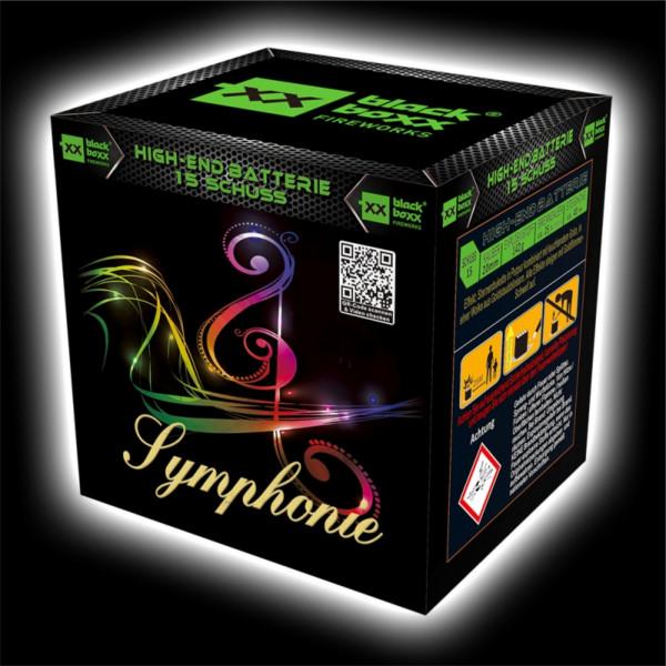 Feuerwerk Symphonie, 15 Schuss Batterie  von Blackboxx online kaufen im Feuerwerkshop Funkelfun