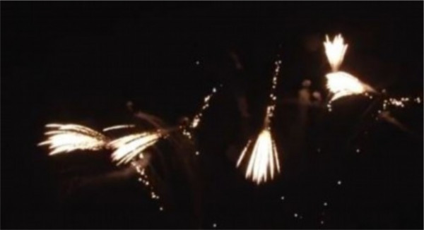 Feuerwerk Brocade waterfall von Pyrotrade online kaufen im Feuerwerkshop Funkelfun