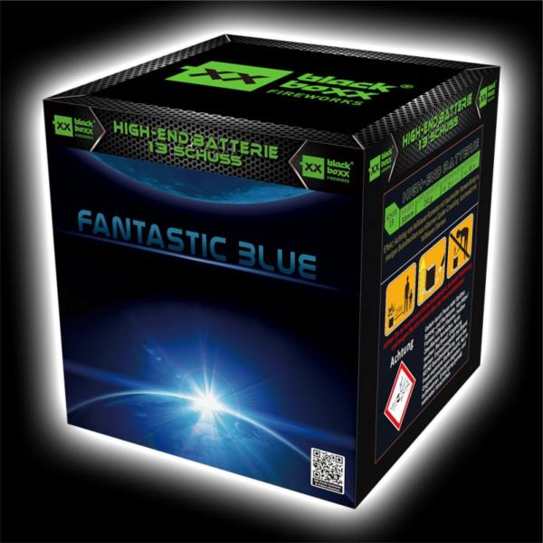 Feuerwerk Fantastic Blue, 13 Schuss Batterie von Blackboxx online kaufen im Feuerwerkshop Funkelfun