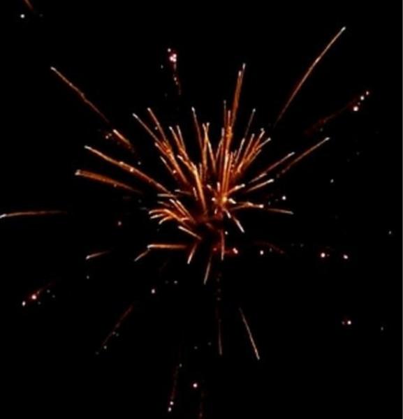 Feuerwerk Red Strobing Willow von Pyrotrade online kaufen im Feuerwerkshop Funkelfun