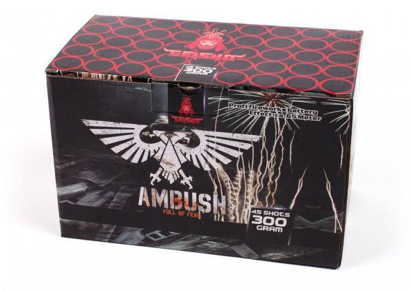 Feuerwerk Ambusch Pfeifaufstig mit Bunten Effekten von Gaisha online kaufen im Feuerwerkshop Funkelfun